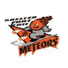 Logo for Fort Erie Meteors